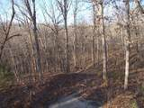 18636 Deer Meadow Drive - Photo 30