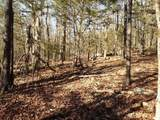 27 acres Mitchells Mile Road - Photo 10