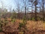 80 acres Ventris & Gravely Hill Road - Photo 1