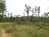 80 acres Ventris & Gravely Hill Road - Photo 10