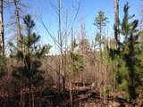 79 acres Fox Hollow & Ventris Road - Photo 3