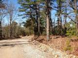 79 acres Fox Hollow & Ventris Road - Photo 4