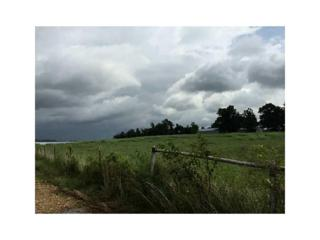 24491 Smith  Rd, Summers, AR 72769 (MLS #1027264) :: McNaughton Real Estate