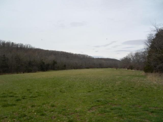 TBD Mineral Springs Rd, West Fork, AR 72774 (MLS #10002329) :: McNaughton Real Estate