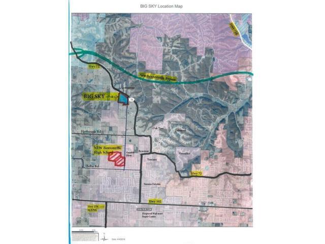 3811 White Fish, Centerton, AR 72719 (MLS #10002450) :: McNaughton Real Estate