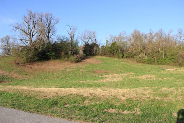 . Park Ridge Dr., Lowell, AR 72745 (MLS #10002611) :: McNaughton Real Estate