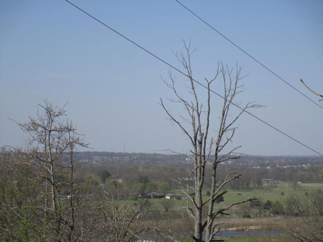 0 Butler Rd, Prairie Grove, AR 72753 (MLS #10002636) :: McNaughton Real Estate