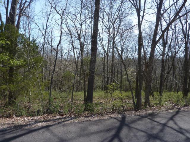 Dirleton Drive, Bella Vista, AR 72715 (MLS #10003146) :: McNaughton Real Estate