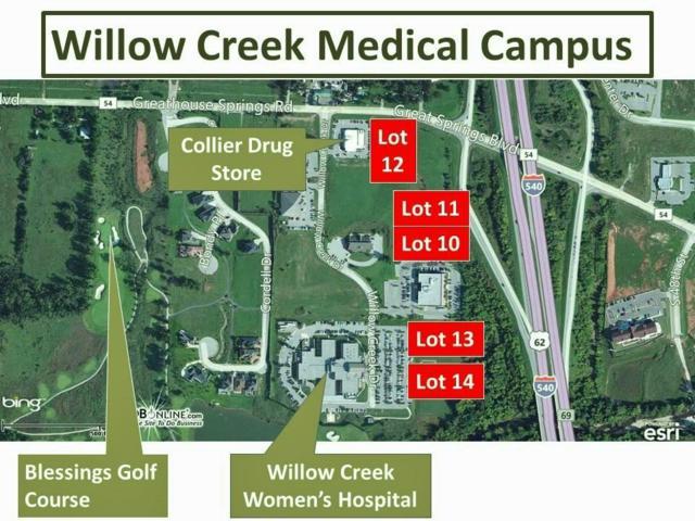 Willow Creek, Johnson, AR 72704 (MLS #1042943) :: McNaughton Real Estate