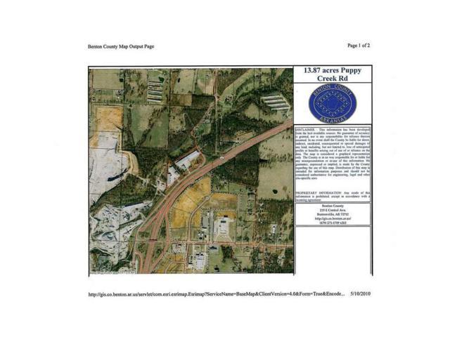 13457 Puppy Creek  Rd, Springdale, AR 72762 (MLS #1048037) :: McNaughton Real Estate