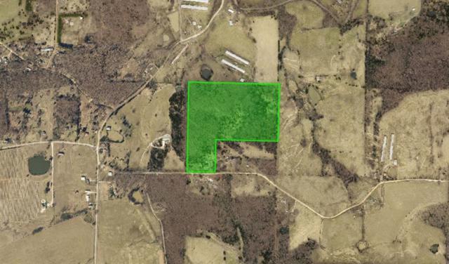 21048 Richland View  Rd, Goshen, AR 72735 (MLS #1053056) :: McNaughton Real Estate