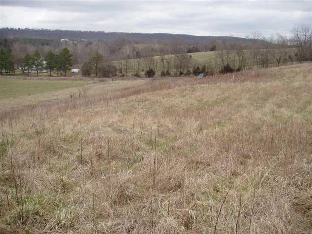 - Goshen Tuttle  Rd, Goshen, AR 72735 (MLS #1055287) :: McNaughton Real Estate