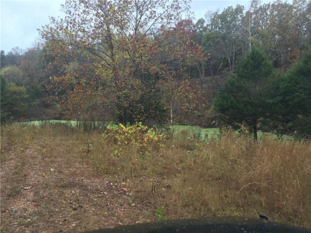 Tuttle Rd, Goshen, AR 72727 (MLS #1056713) :: McNaughton Real Estate