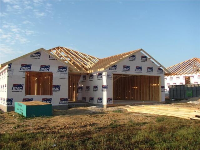 143 Alexandra  Loop, Elkins, AR 72727 (MLS #1059998) :: McNaughton Real Estate