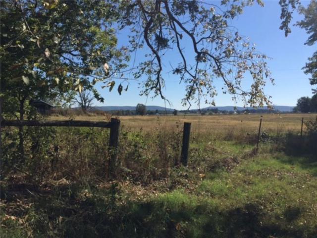 Gibson Hill  Rd, Farmington, AR 72730 (MLS #1061720) :: McNaughton Real Estate