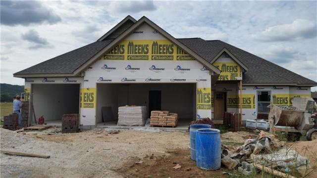 602 Chamberlain, Prairie Grove, AR 72753 (MLS #1061799) :: McNaughton Real Estate
