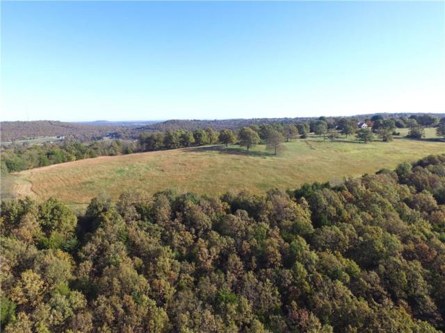 Fire Tower  Rd, Goshen, AR 72727 (MLS #1063138) :: McNaughton Real Estate
