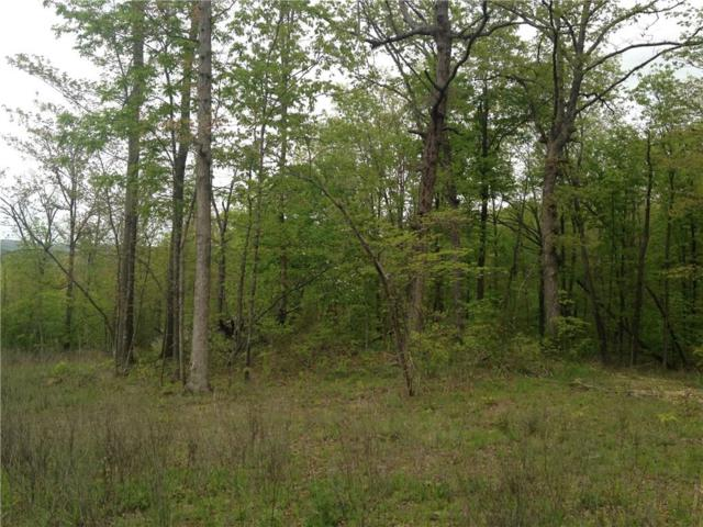 CR 935, Green Forest, AR 72638 (MLS #1064706) :: McNaughton Real Estate