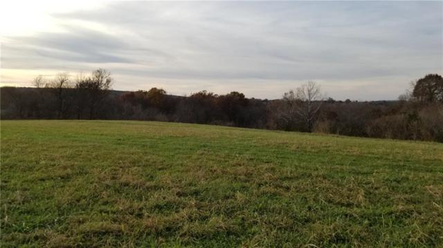 Goshen-Tuttle Rd, Elkins, AR 72727 (MLS #1065132) :: McNaughton Real Estate