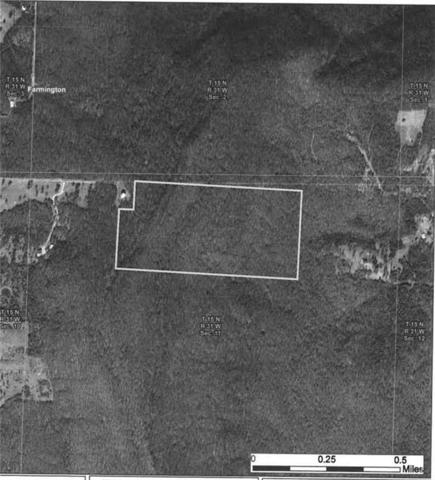 77 Acres Mol, Greenland, AR 72737 (MLS #1066005) :: McNaughton Real Estate