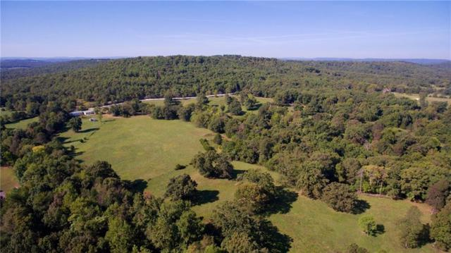 22311 Fire Tower, Elkins, AR 72727 (MLS #1070427) :: McNaughton Real Estate