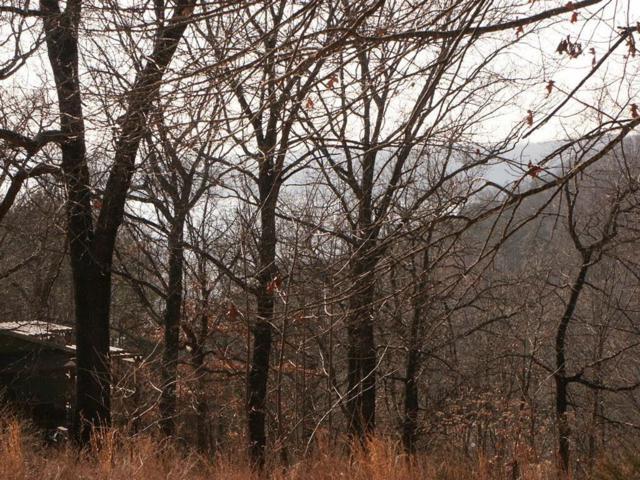 Hillcrest Road, Eureka Springs, AR 72631 (MLS #1078647) :: Annette Gore Team | EXP Realty