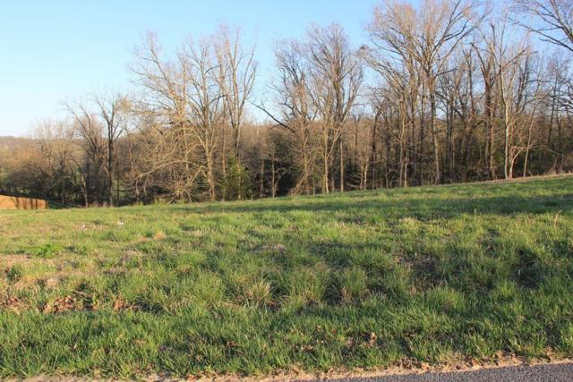 Park Ridge  Dr, Lowell, AR 72745 (MLS #1078951) :: McNaughton Real Estate