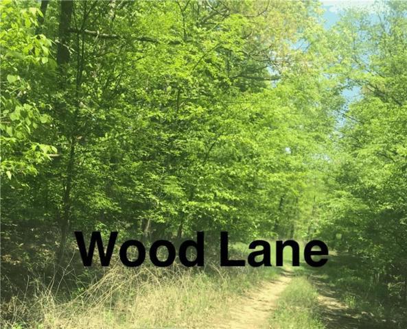 Lot 6 Wood  Ln, Bella Vista, AR 72714 (MLS #1079489) :: McNaughton Real Estate
