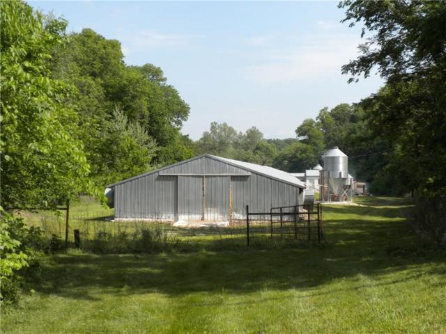 22953 Davis Valley  Rd, Gentry, AR 72734 (MLS #1079538) :: McNaughton Real Estate
