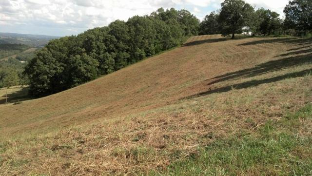 Lot 7 Cr 306, Eureka Springs, AR 72632 (MLS #1080423) :: Annette Gore Team | RE/MAX Real Estate Results