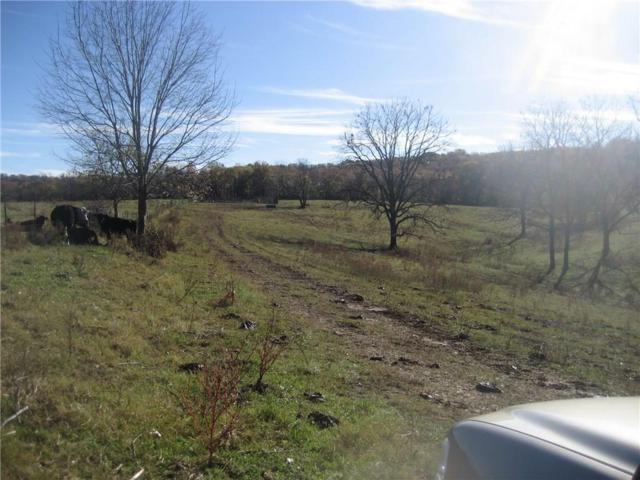105 Ac Bowen  Blvd, Goshen, AR 72735 (MLS #1086158) :: McNaughton Real Estate