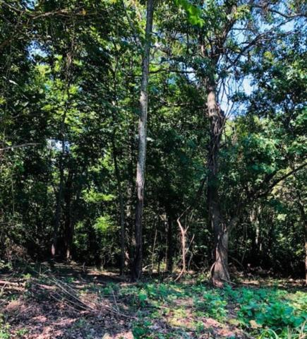 Red Bud  Tr, West Fork, AR 72774 (MLS #1086345) :: McNaughton Real Estate