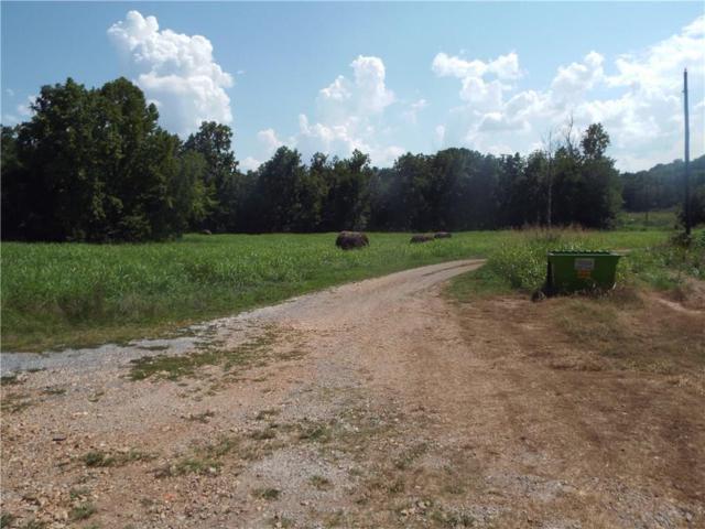 0000 Honey Creek  Rd, Sulphur Springs, AR 72768 (MLS #1087633) :: McNaughton Real Estate