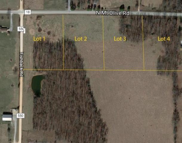 N Mt Olive Rd, Bentonville, AR 72712 (MLS #1087800) :: McNaughton Real Estate