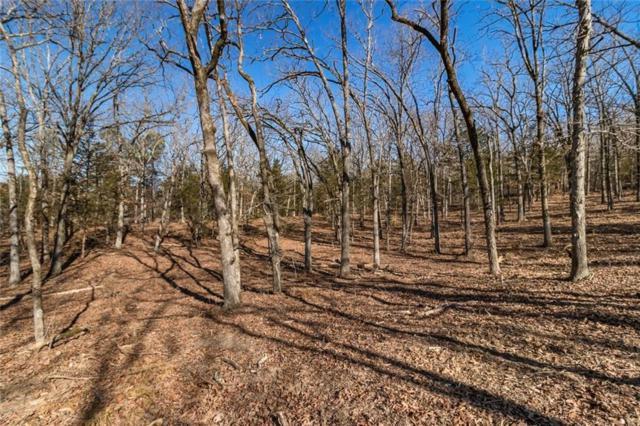 1741 S Finger  Rd, Fayetteville, AR 72701 (MLS #1088131) :: McNaughton Real Estate