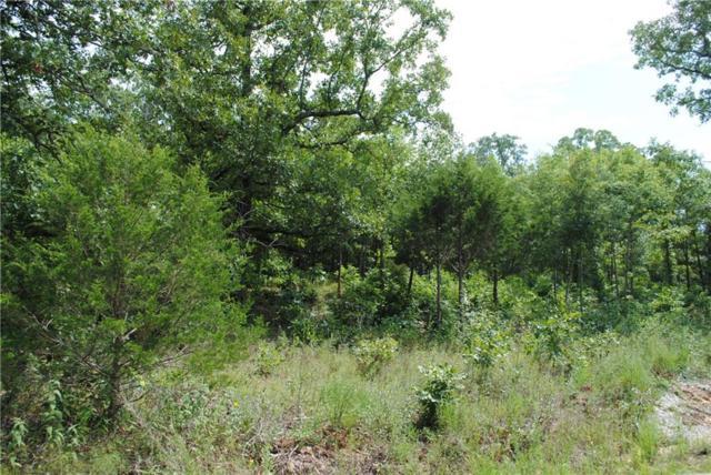 Mountain Drive, Garfield, AR 72732 (MLS #1089139) :: McNaughton Real Estate