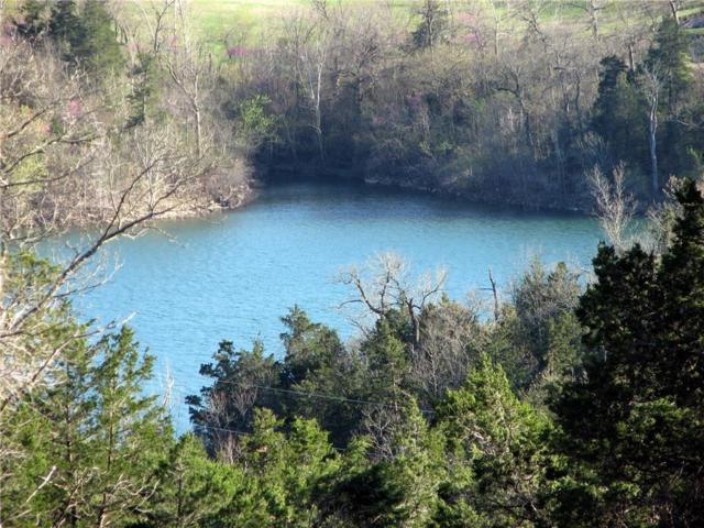 Oaks Landing On Table Rock, Holiday Island, AR 72631 (MLS #1091988) :: HergGroup Arkansas