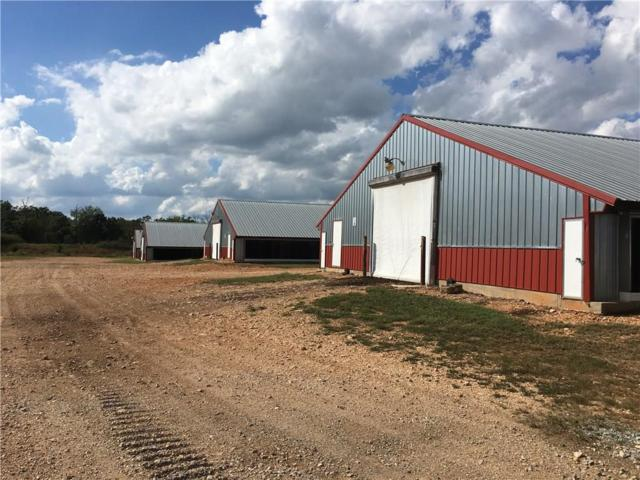 54709 683  RD, Colcord, OK 74338 (MLS #1094220) :: McNaughton Real Estate