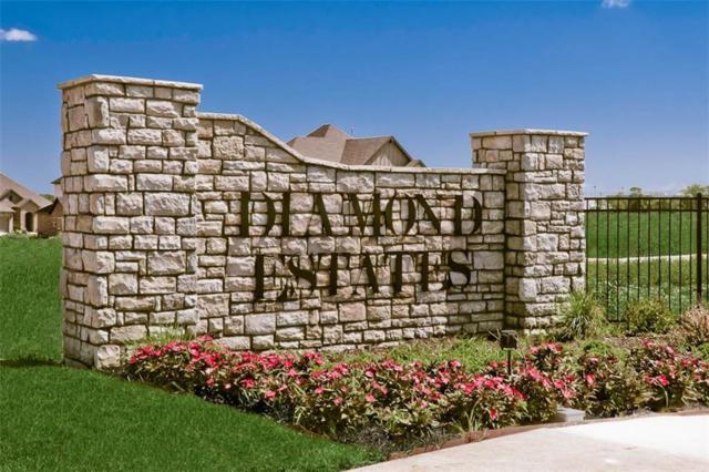 Blue Moon  Rd, Centerton, AR 72719 (MLS #1094706) :: McNaughton Real Estate