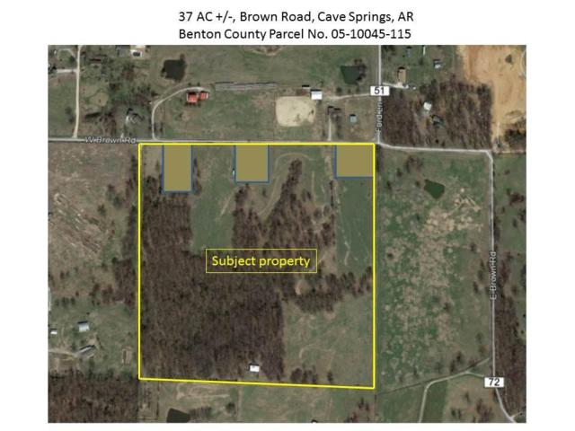37.14AC W Brown  Rd, Cave Springs, AR 72718 (MLS #1094736) :: McNaughton Real Estate
