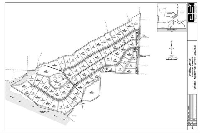 Lot # 47 River Hollow  Rd, Goshen, AR 72703 (MLS #1095460) :: McNaughton Real Estate