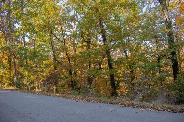 Folkingham Ln, Bella Vista, AR 72715 (MLS #1095480) :: HergGroup Arkansas