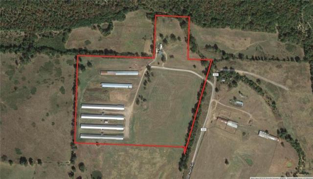 11338 Doe Run  Tr, Ozark, AR 72949 (MLS #1096936) :: McNaughton Real Estate