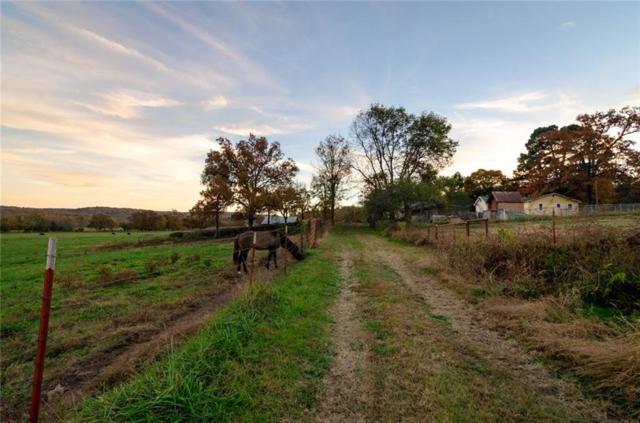 7086 Madison 6041  Rd, Elkins, AR 72727 (MLS #1097049) :: McNaughton Real Estate
