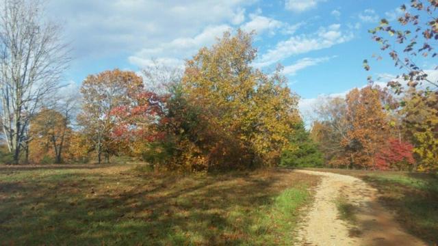 112.87AC Smith Ridge  Rd, Garfield, AR 72732 (MLS #1097977) :: HergGroup Arkansas