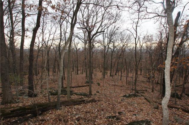 Posy Mountain  Rd, Garfield, AR 72732 (MLS #1098573) :: HergGroup Arkansas