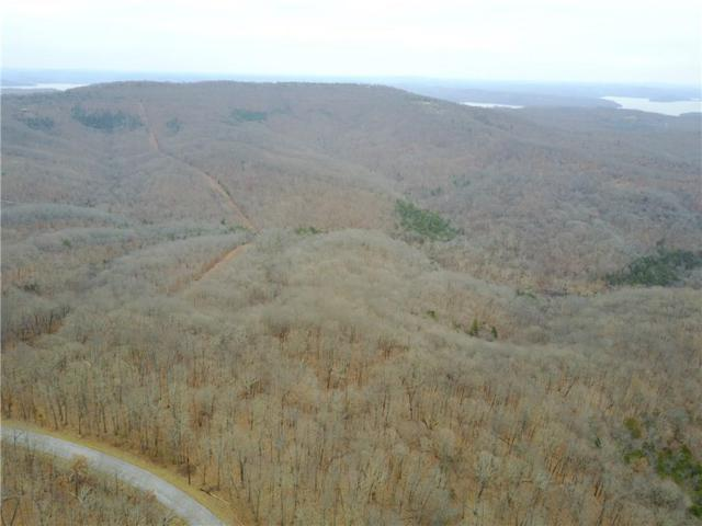 Posy Mountain  Rd, Garfield, AR 72732 (MLS #1098609) :: HergGroup Arkansas