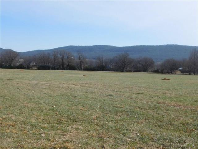 12369 Clyde Carnes  Rd, Farmington, AR 72730 (MLS #1099150) :: McNaughton Real Estate