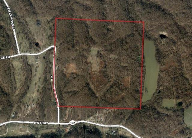 17380 Turkey Ridge  Rd, Decatur, AR 72722 (MLS #1099342) :: McNaughton Real Estate