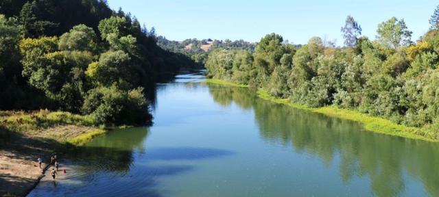 0 River Hollow  Rd, Goshen, AR 72735 (MLS #1103659) :: McNaughton Real Estate